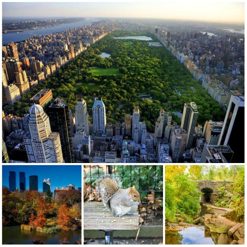 Upoznavanje s događajima u New Yorku
